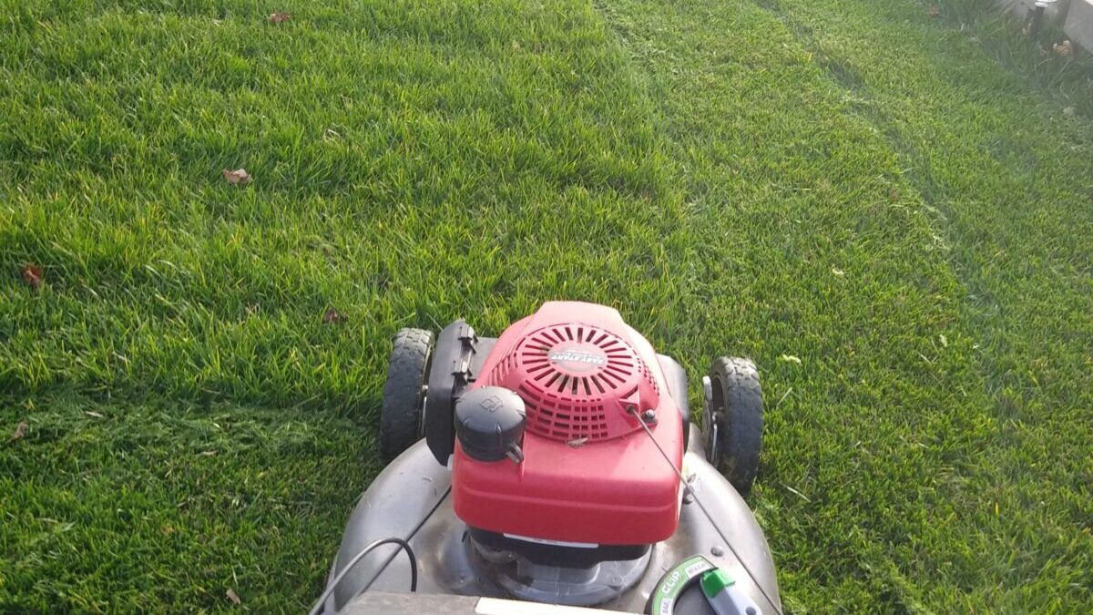 commercial lawn care lompoc ca