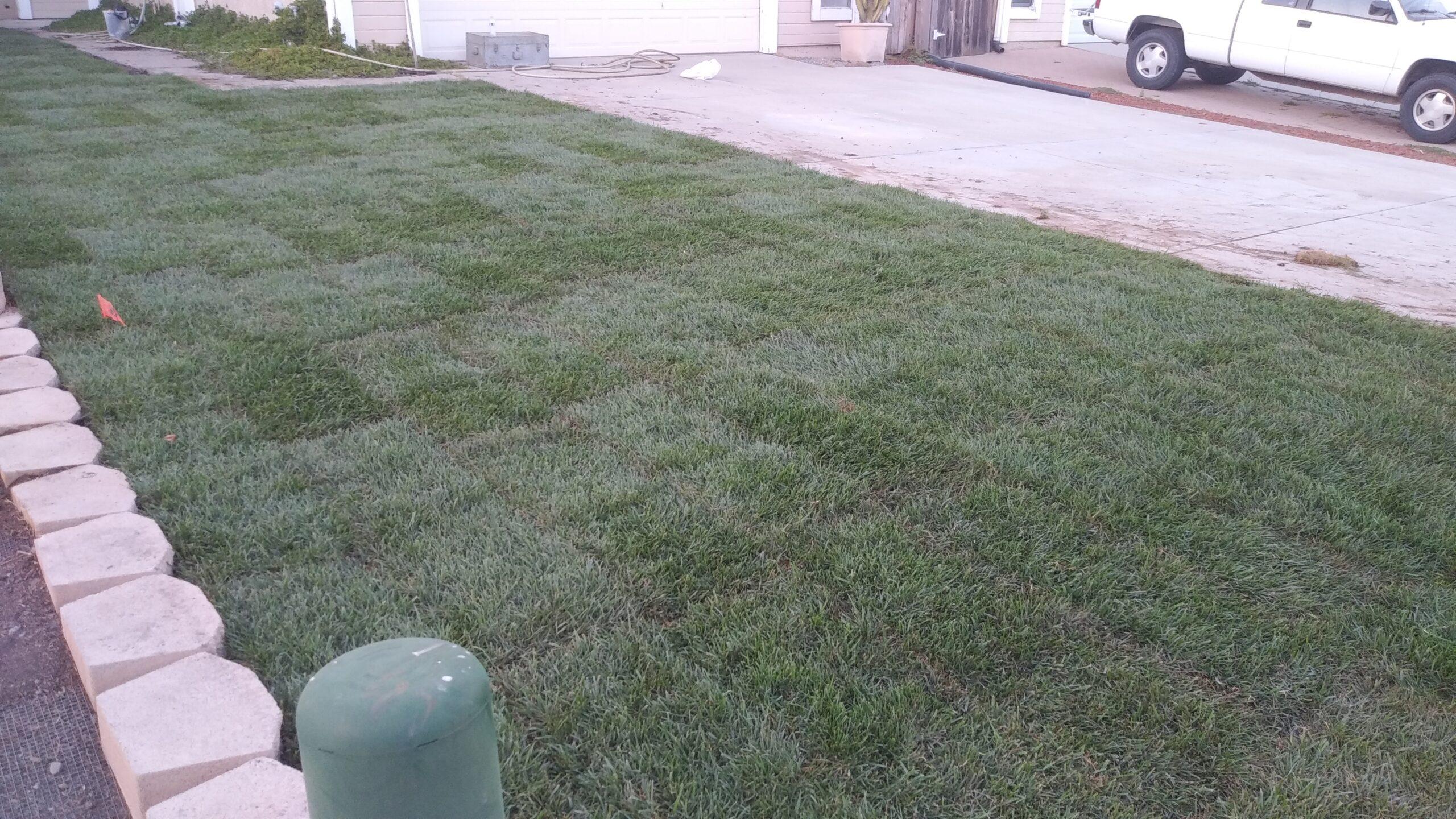 lawn installation in lompoc ca