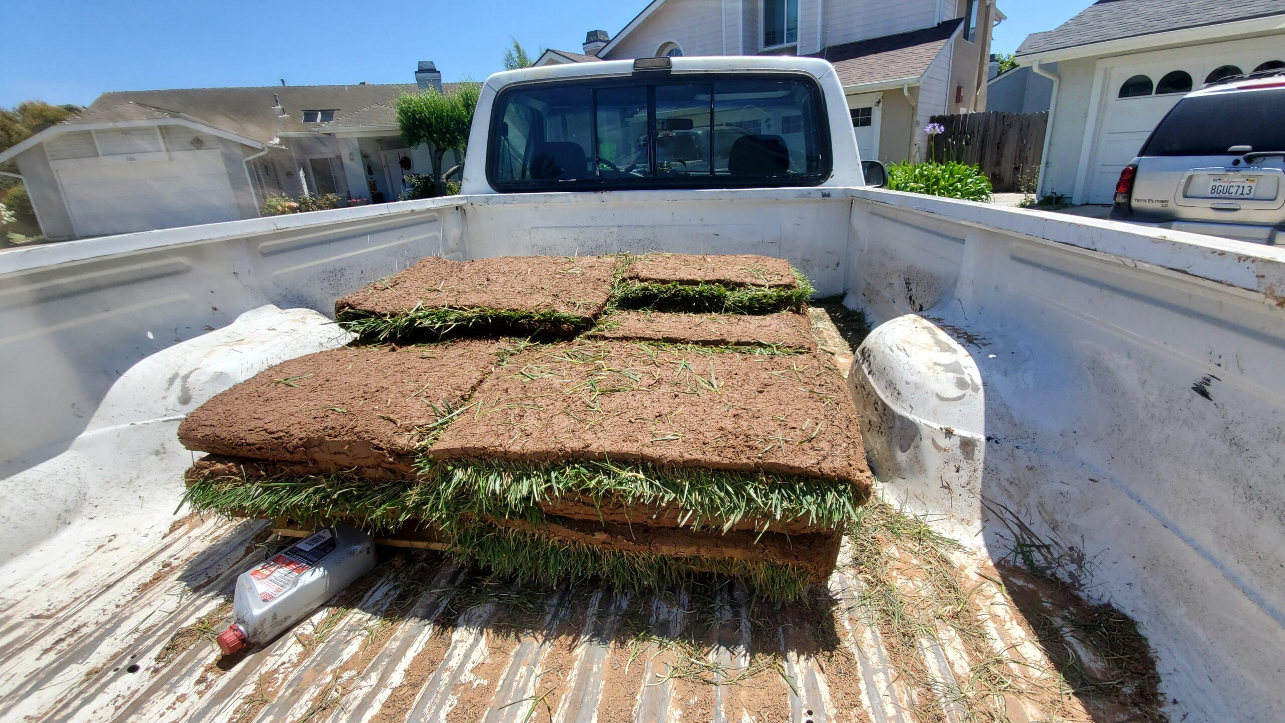sod installation in orcutt ca