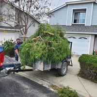 yard cleanup orcutt ca