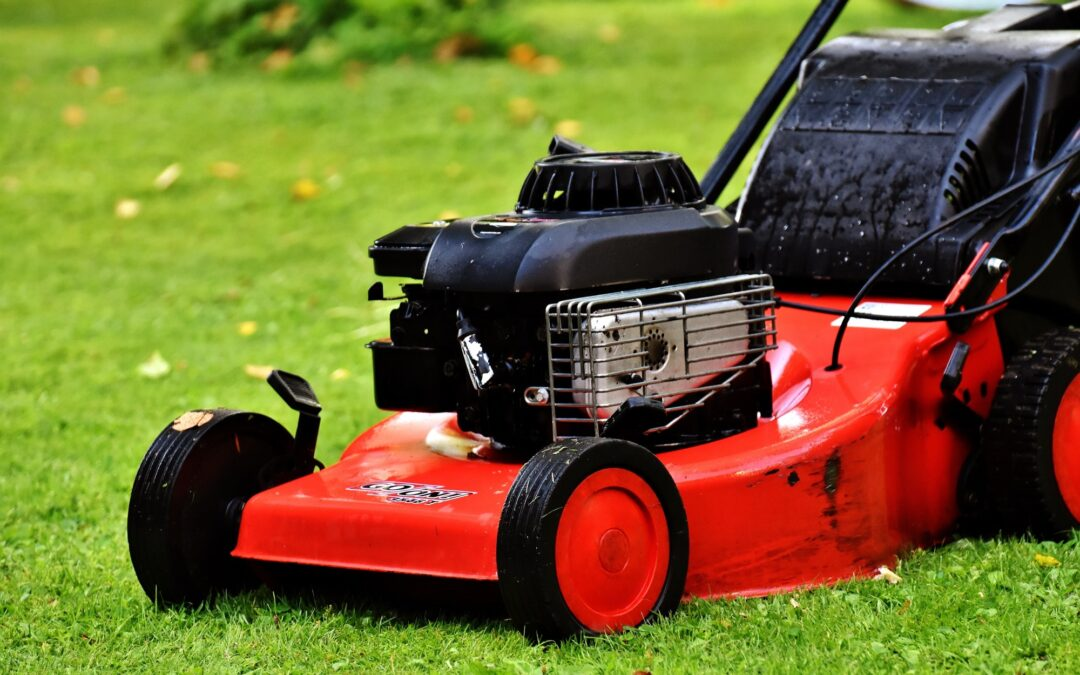 How Often Should You Mow Your Lawn? A Helpful Guide