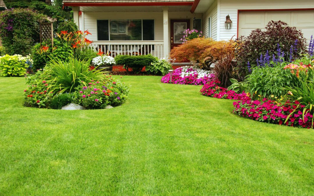 How to Make Your Lawn Greener: 5 Effective Tips